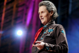 Picture of Temple Grandin lecturing at a TED talk